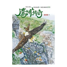 鹰训传奇 齐宏伟 华夏出版社9787508091600正版全新图书籍Book