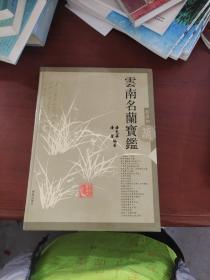 云南名兰宝鉴:[摄影集]