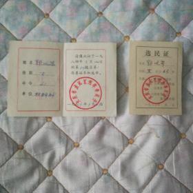 选民证(1984年.1987年   2张)