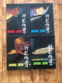 神龙传奇(1、2、3、4)四册合售【铜版纸】