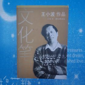 王小波作品:文化筆記【書內干凈 2009年一版一印】