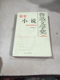 鲁迅文学奖 获奖小说。