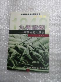 九州硝烟:军民奋起大反攻