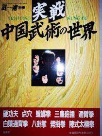 正版 实战中国武术的世界日文版  点穴 螳螂拳 白猿通背拳  劈挂拳 三皇炮捶 硬功夫