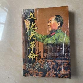 文化大革命记实录 上
