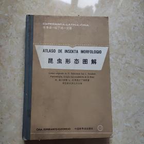 昆虫形态图解.世界语—拉丁语—汉语