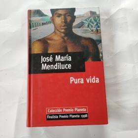 Jose MαrIα Mendⅰluce Pure vⅰdα