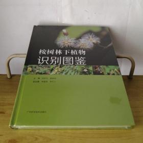 桉树林下植物识别图鉴