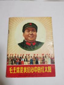 毛主席是我们心中的红太阳(去林题词和图像)