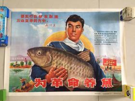 为革命养鱼