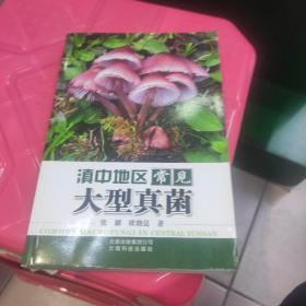 滇中地区常见大型真菌