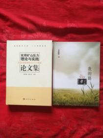 实用矿山压力理论与实践论文集:庆贺宋振骐院士八十寿辰