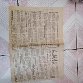 文摘报 1989年5月4日