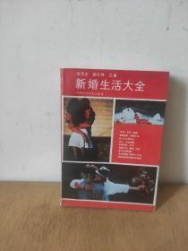新婚生活大全(修订本)