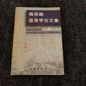 梅祖麟语言学论文集