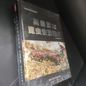 中国国家级自然保护区:高黎贡山昆虫生态图鉴