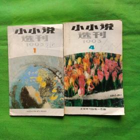 小小说选刊