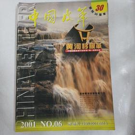 中国皮革2011年6期