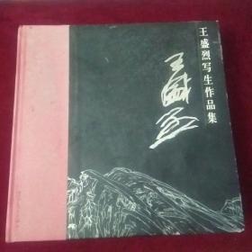 王盛烈写生作品集