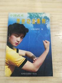 中国武术传统功法集萃