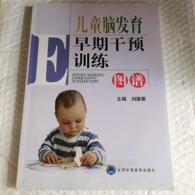 正版塑封  儿童脑发育早期干预训练图谱