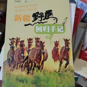 新疆野马回归手记