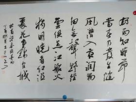 王堂兵,中国书法家协会最年轻的理事四尺整张书法精品唐诗