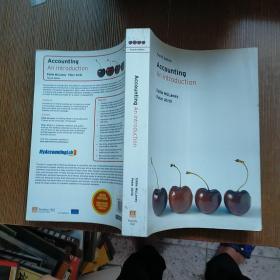 Accounting Anlntroduction 外文版  实物拍图 现货 无勾画