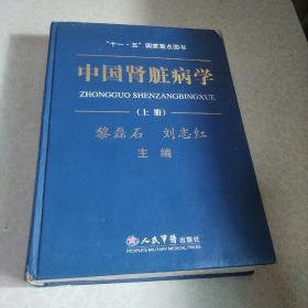 中国肾脏病学 上册