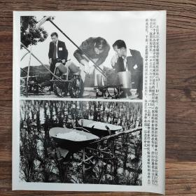 超大尺寸: 1982年,世界氮肥专家在福州考察球肥深施,外国专家研究福建研制的施肥机