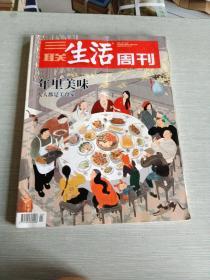 三联生活周刊2020  第2  3期合刊  1071
