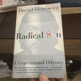 Radical son : a generational Odyssey 激进之子: 一代奥德赛