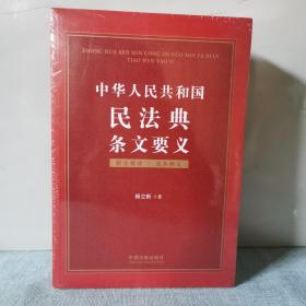 中华人民共和国民法典条文要义      正版新书未开封