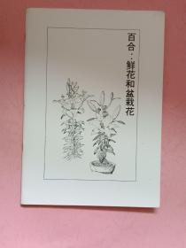 百合 鲜花和盆栽花