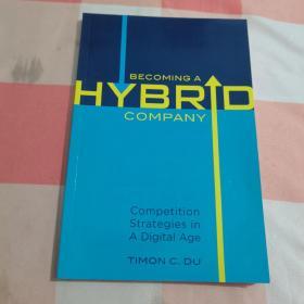 BECOMING A HYBRID COMPANY【内页干净】