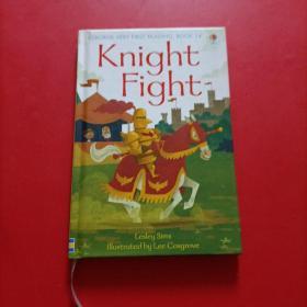 14. Knight Fight