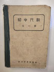 初中代数(全一册)