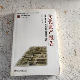 文化遗产报告:世界文化遗产保护运动的理论与实践(实物拍照)