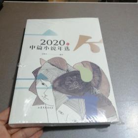 2020年中篇小说年选