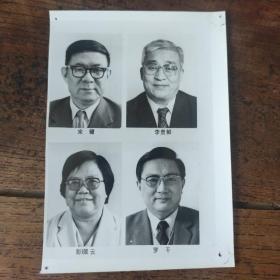1993年,八届人大一次会议,新当选的国务委员:宋健、李贵鲜、彭佩云、罗干