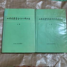 山东省农业合作化史料集(上下册)精装
