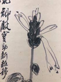 齐白石花卉