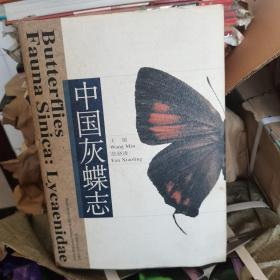 中国灰蝶志