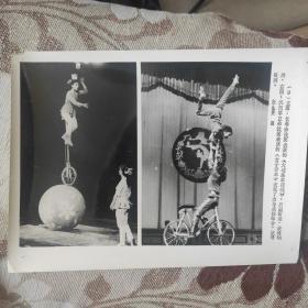 1984年,长春杂技团的《大球高车顶碗》获铜牌,沈阳军区杂技团《自行车女子赛车》获本次比赛银牌