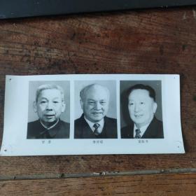 1993年,新当选的八届人大副委员长:李沛瑶、吴阶平、甘苦