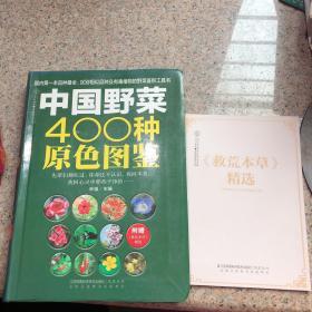 中国野菜400种原色图鉴