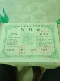 股权证 湖北省十堰市张湾区,股权证一百股,四同号名义股,用过有印章