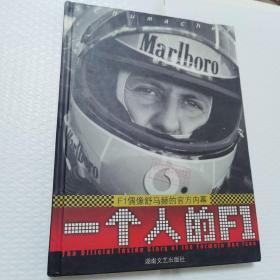 一个人的F1:F1偶像的官方内幕