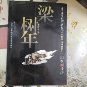 中央美术学院中国画系国画教材之一山水画技法 梁树年