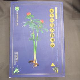 云南天然药物图鉴 第五卷